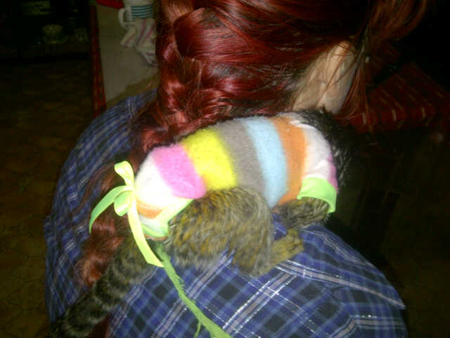 marmoset-&amp-tamarin-clothes-for-sale-jumper
